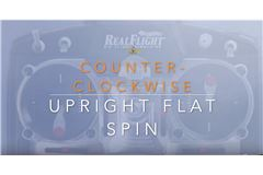 Upright Flat Spins Clockwise and Counter-Clockwise