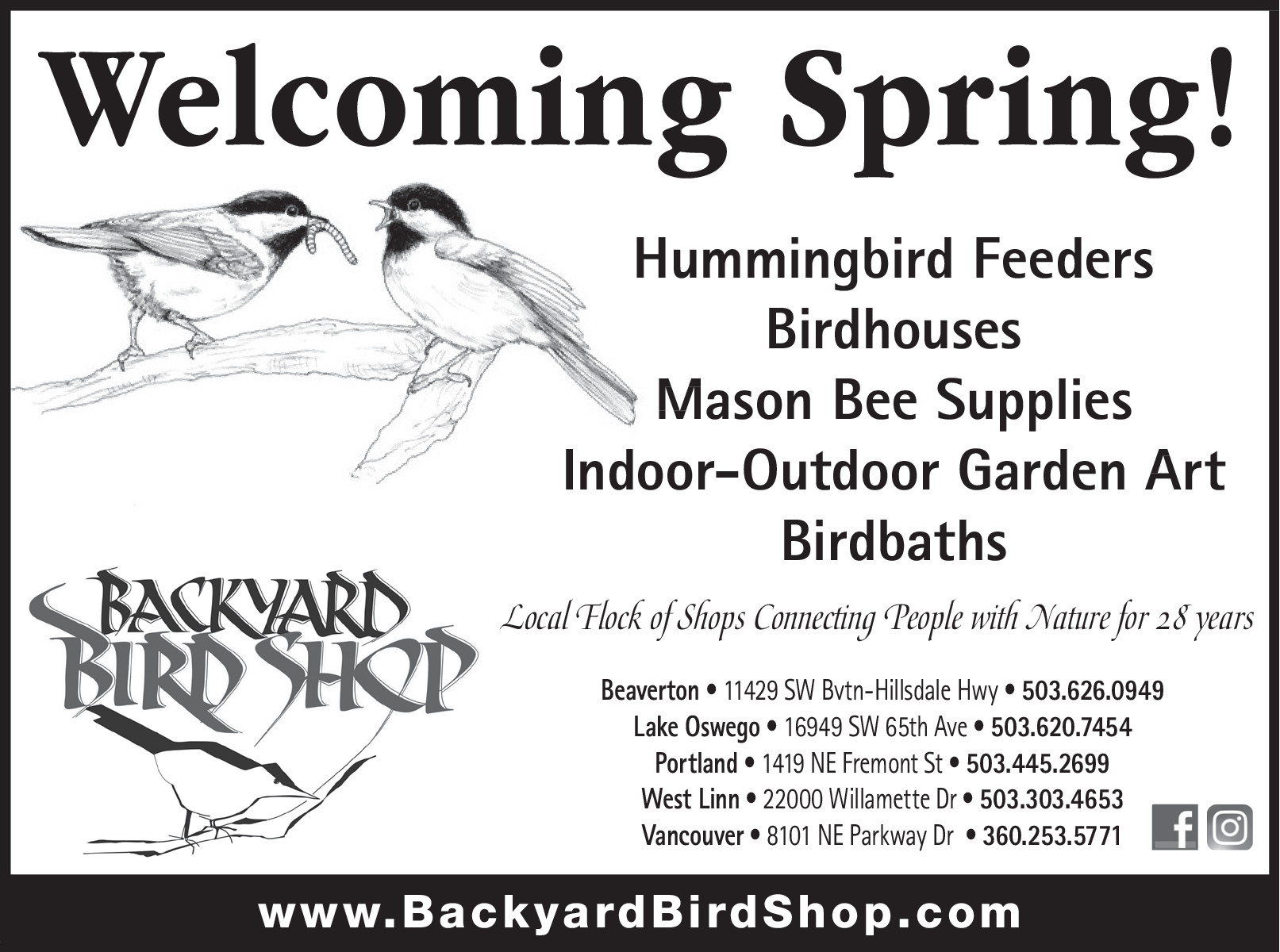 15+ The Backyard Bird Shop Background - HomeLooker
